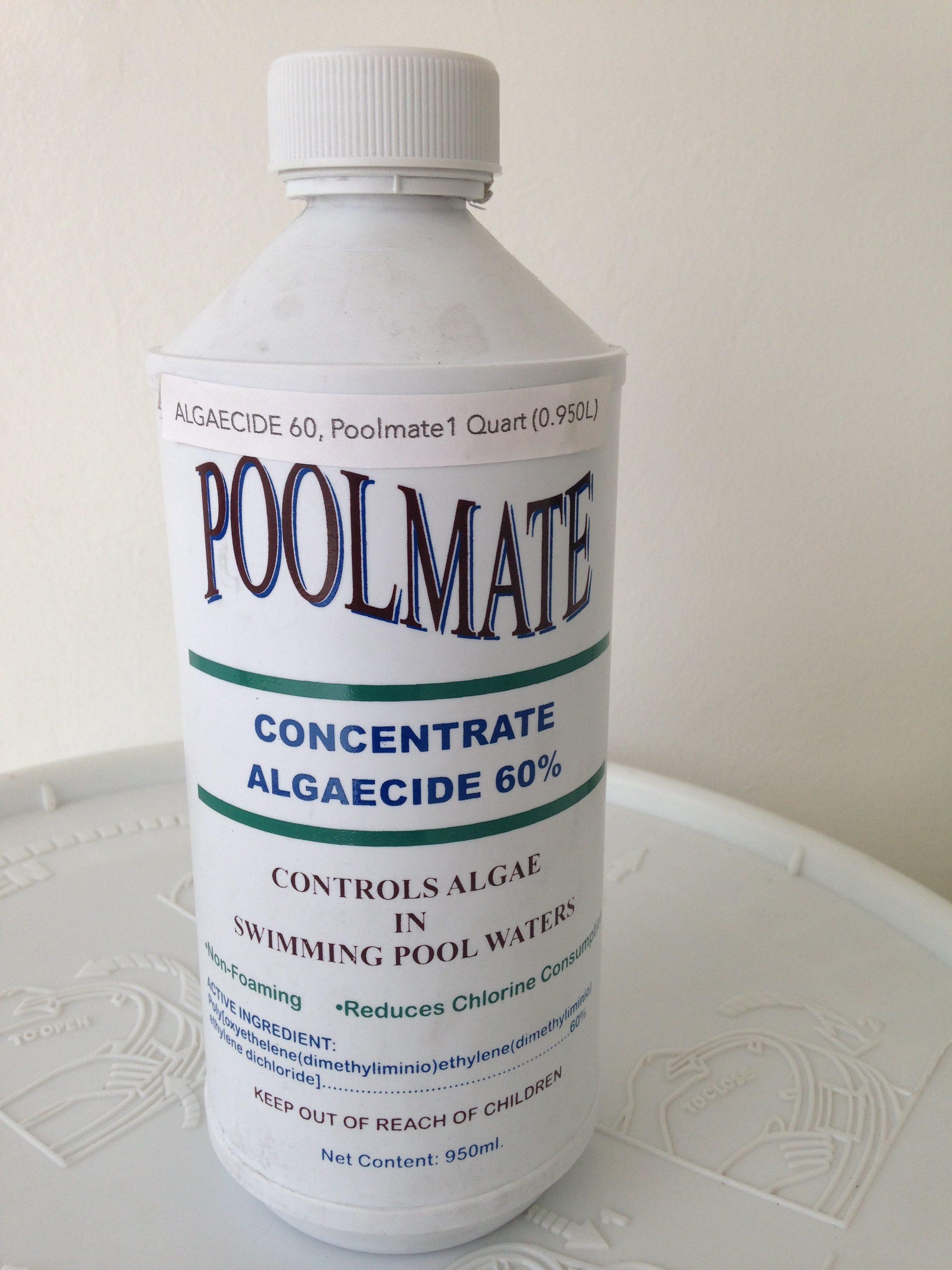 Poolworld Philippines Inc Algaecide 60 Poolmate
